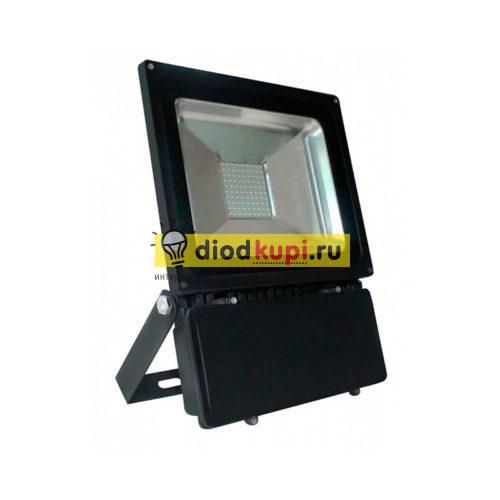 Светодиодный прожектор 100Вт SBL-FLSMD