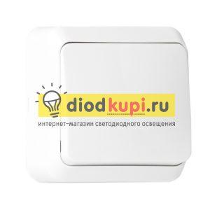 _1_klavishnyj_10A_belyj_YUpiter_1