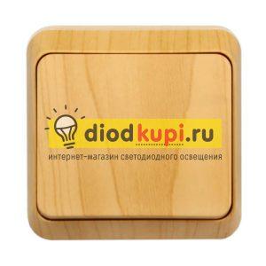 _1_klavishnyj_10A_derevo_YUpiter_1