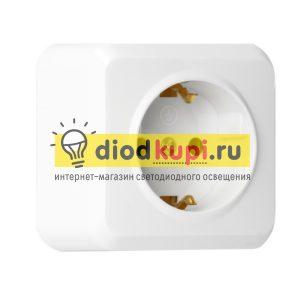 _1_mestnaya_10A_s_zazemleniem_belaya_YUpiter_1
