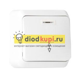 _prohodnoj_1_klavishnyj_s_indikatorom_10A_belyj_YUpiter_1